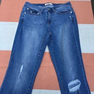 Gap 1969 Curvy true skinny 28R